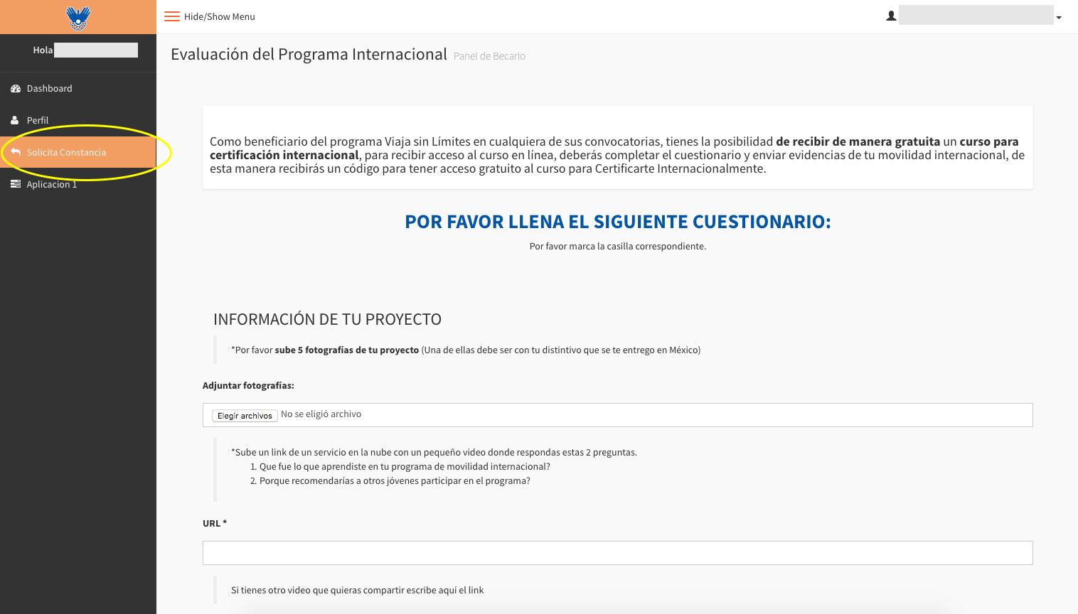 Vistoso Aplicación De Curriculum Vitae Inteligente Ideas - Ejemplo ...